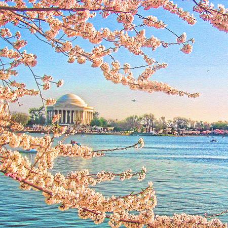 Washington DC - The Nation's Capital - Lexington Kentucky Photographer