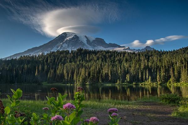 Mt Rainer 8.20