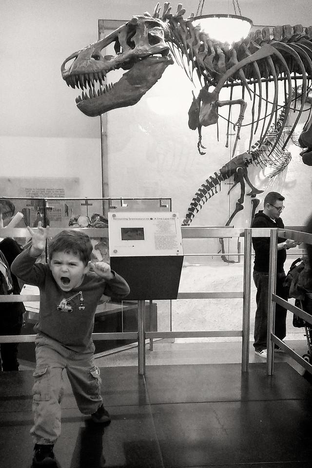 Fierce Nate-Rex!