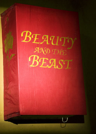 T&C--Beauty and the Beast