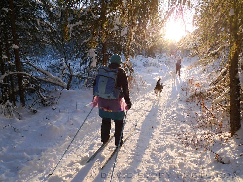 Skiing into sweet sunshine.