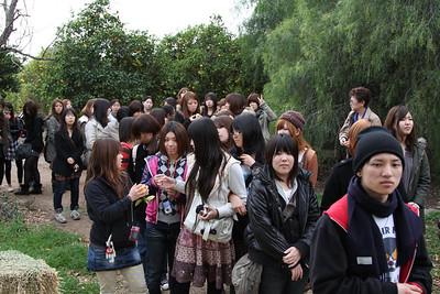 Japanese Student Tour Jan 2010