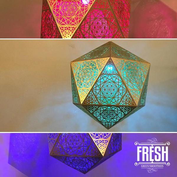 conscious-FreshGreenSmoothies_com-Vegan-Intelligent-Compassionate-raworganicvegan-plantbased-greensmoothies5204.jpg