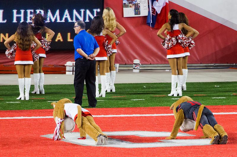... and Sasha & Shasta do their celebratory push-ups.