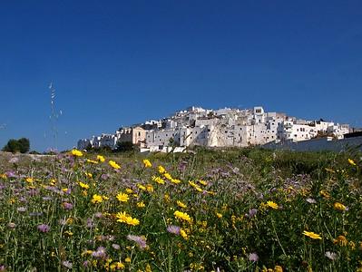 Prachtstreken in de hak van Italië (Apulië, 2010)