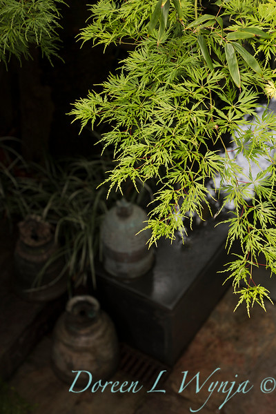 Secret Garden_5001.jpg