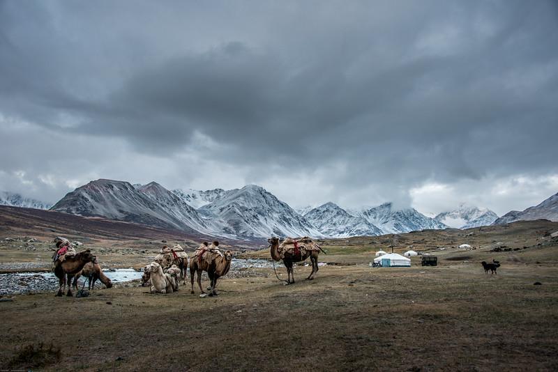 Mongolsko (446 of 496).jpg