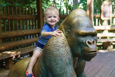 20180825 Atlanta Zoo