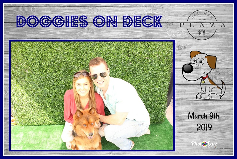 Doggys on Deck21.jpg