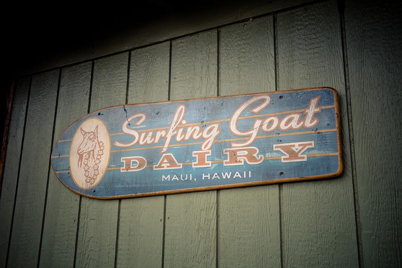 surfing goat sign.jpg