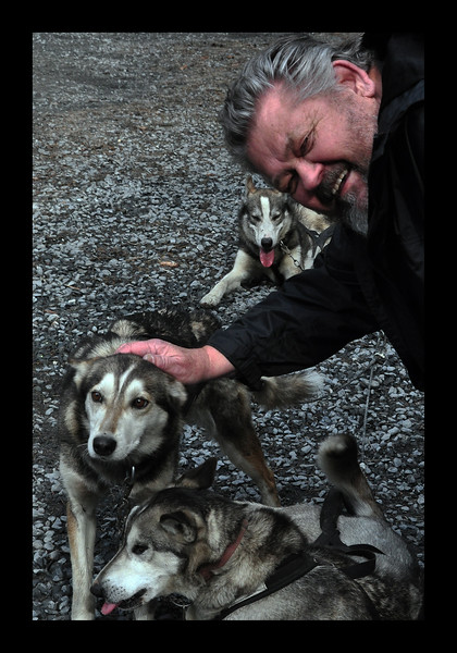 Seavey's Huskies in Alaska - 2013.JPG