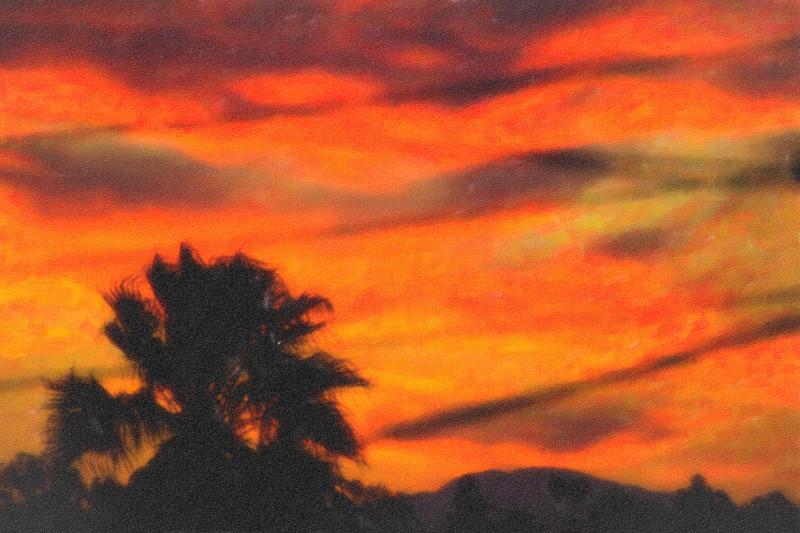 feb 4 - sunrise.jpg