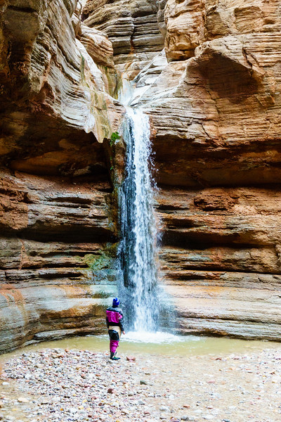 Daphnee Tuzlak takes in the waterfall in Fern Glen Canyon. Winter snow and rain had the waterfall flowing more than I'd ever seen it.