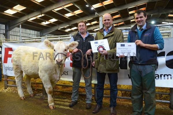 MTH Beeston Suckled Calves 6/11/2015