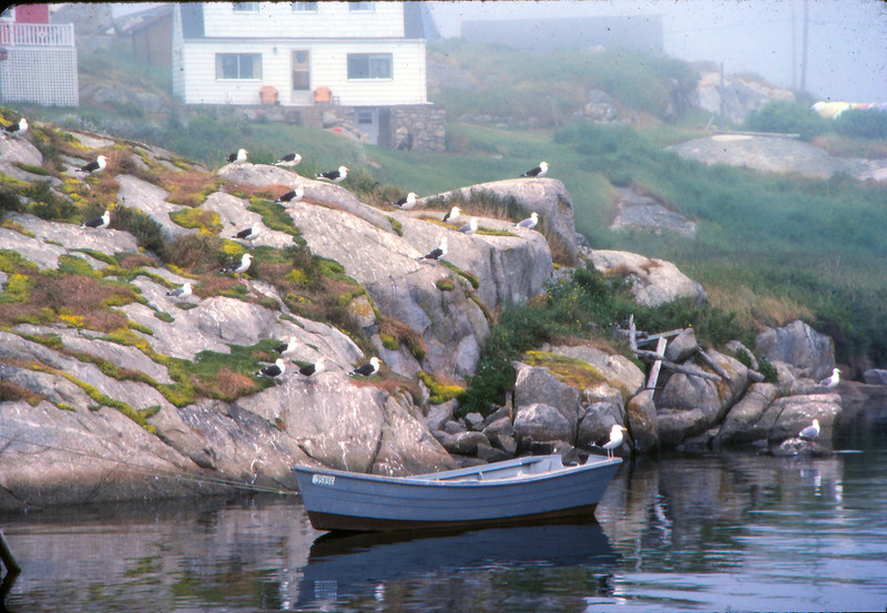 Peggy's Cove - 01.jpg