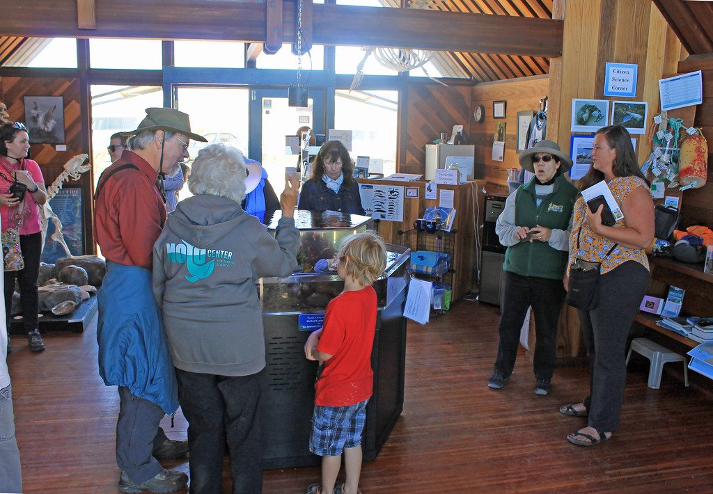 . The Noyo Center for Marine Science�s Crows Nest was a popular destination.