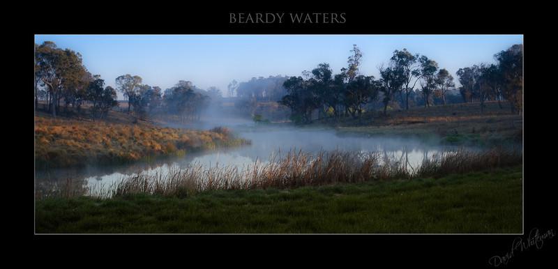 Beardy Waters