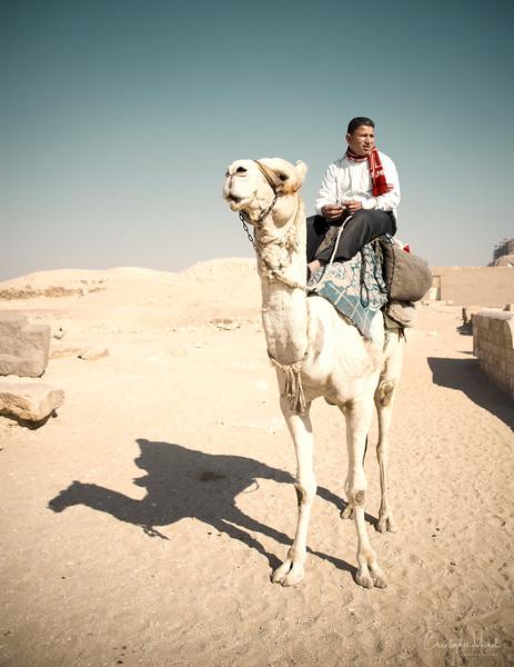 saqqara_unas_tomb_serapeuma_dahshur_red_bent_pyramid_20130220_4905.jpg