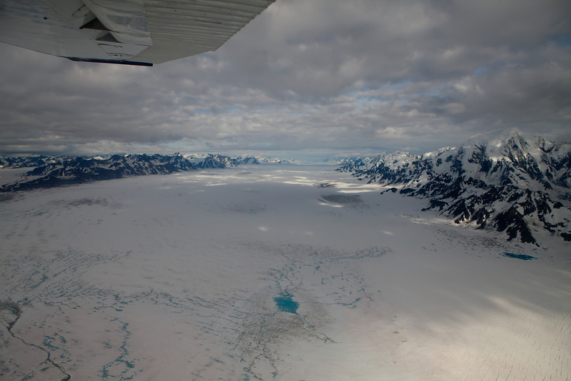 Alaska Icy Bay-4694.jpg
