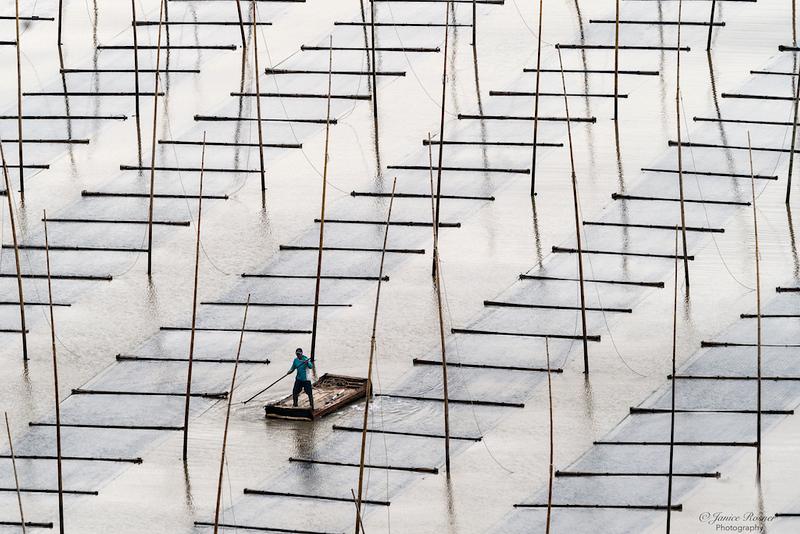 Man checking seaweed field, Dongbi