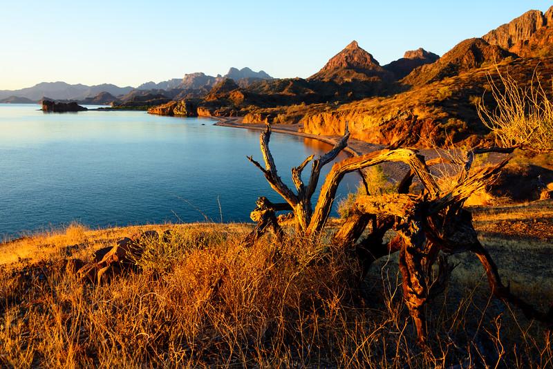 Baja Sea Kayak_3_17 (40 of 1022)-Edit.jpg