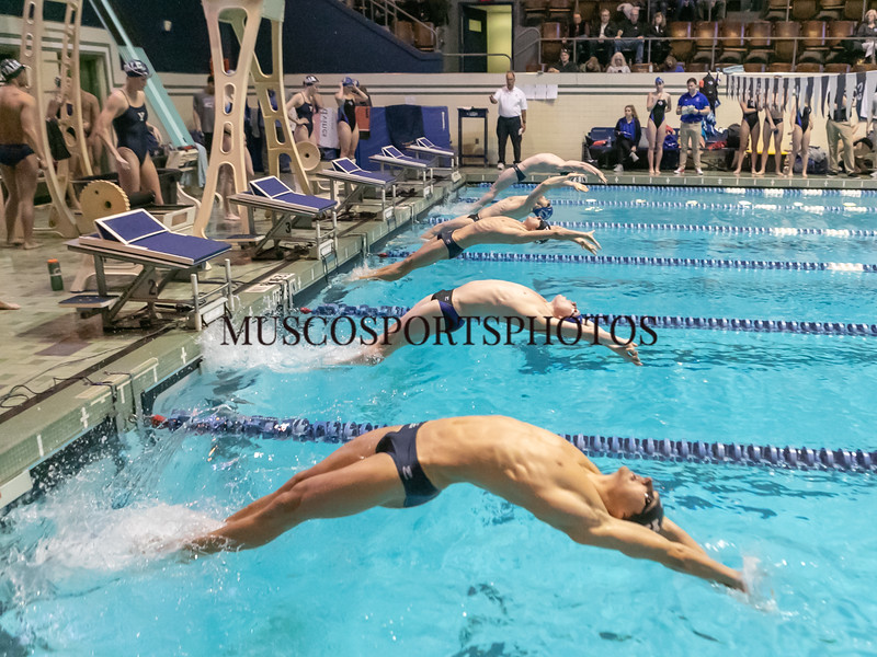 Swimming-diving vs Seton Hall_1017.jpg