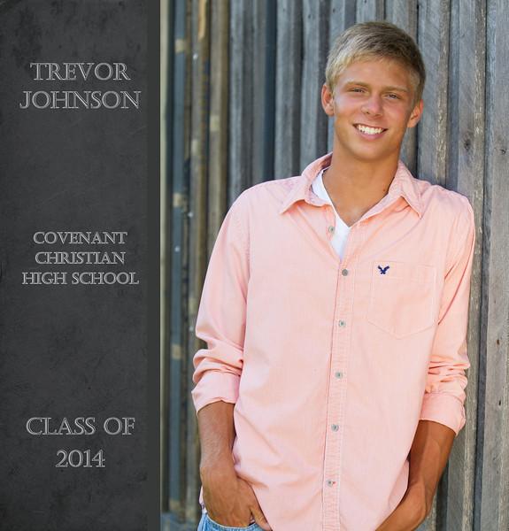 Trevor Book 2