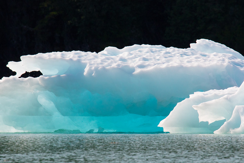 Petersberg Alaska 2019-4.jpg