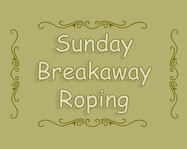 DEC LB 2018 Sun Breakaway Roping