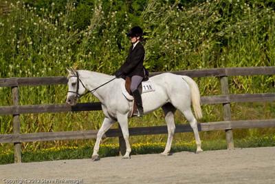 Bradford County Roundup Breed Type Hunter Under Saddle Horses JR