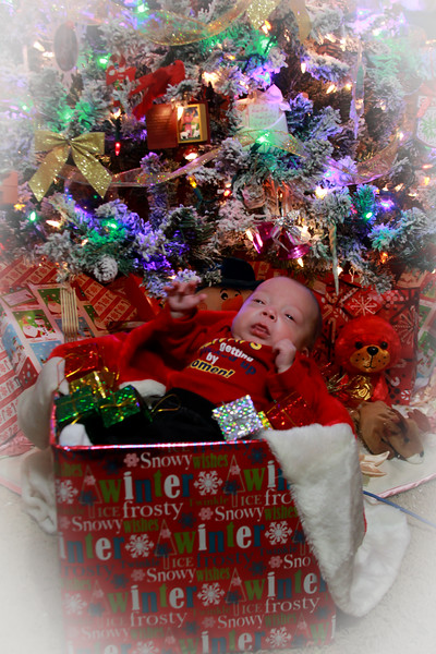 Gregory Christmas photos 2015