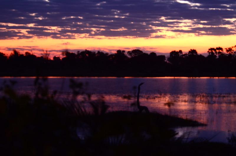 91 - Sunset Xigera - Anne Davis