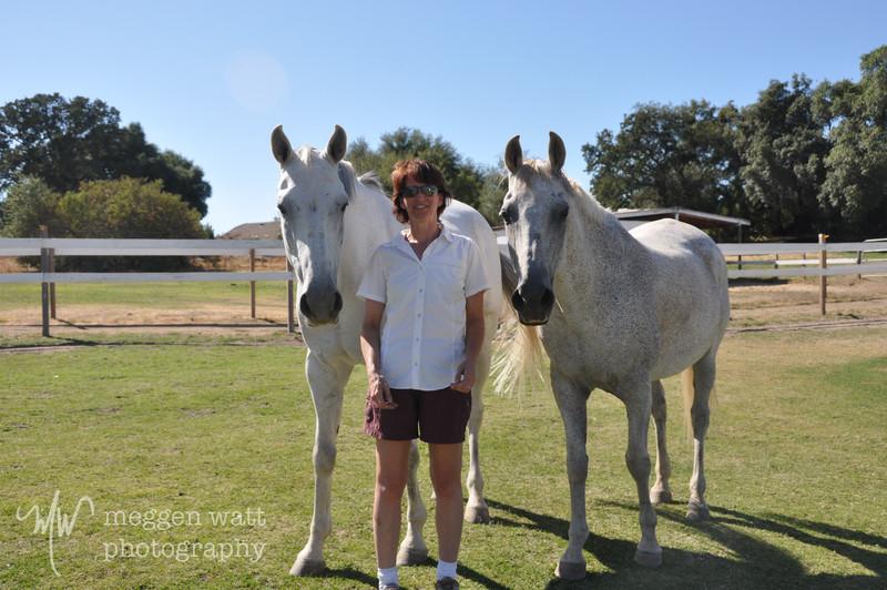 EB&Horses-163.jpg