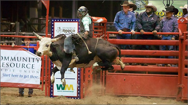 2020 Bull Feb 7