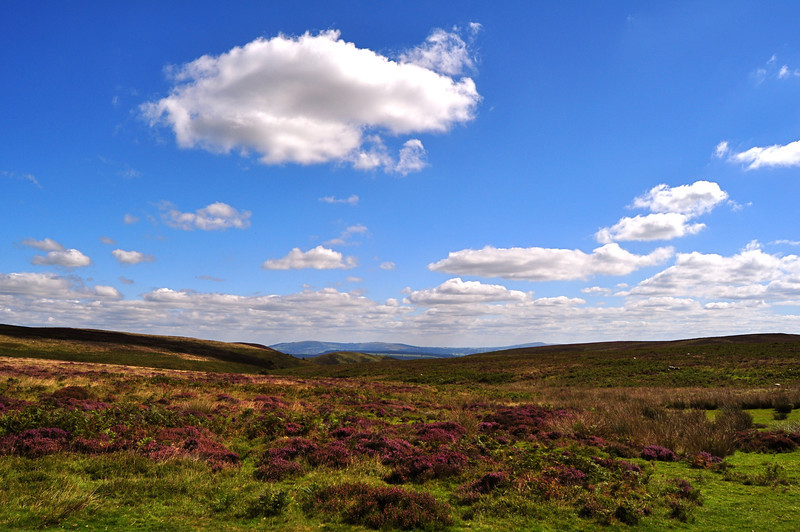 The Longmynd from the Burway