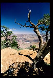 Vacation Slide Scans Utah Canyons