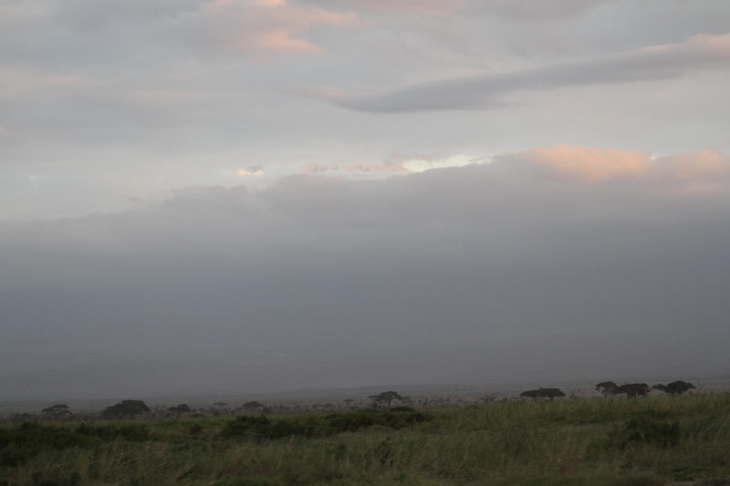 Kenya 2019 #2 1633.JPG