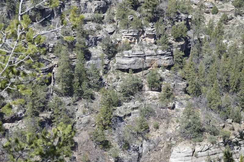 Arizona2014-Walnut_Canyon_1.JPG