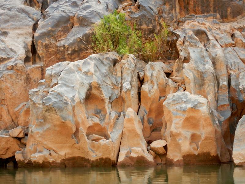 Grand Canyon Rafting Jun 2014 350.jpg