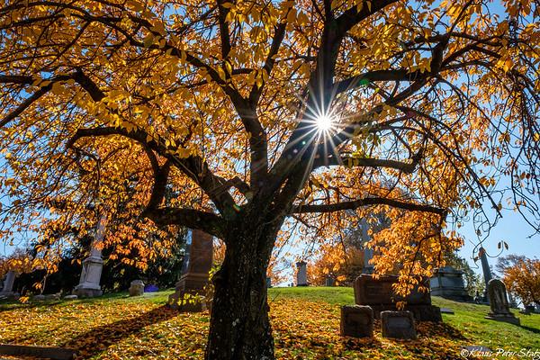 Visit Cemetery November 2020