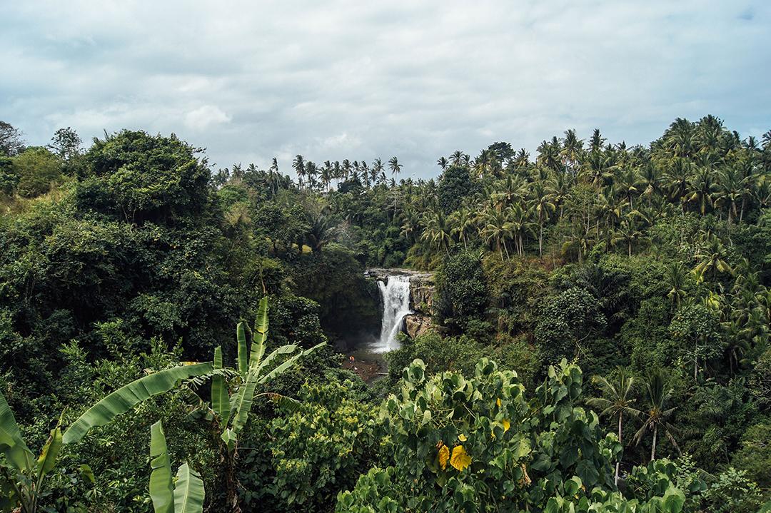 Bogor, Indonesia
