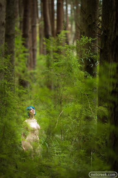 creek171102-0481.jpg
