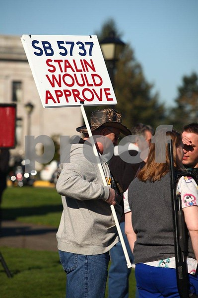 Pro-gun rally at the Capitol in Olympia, Washington state.