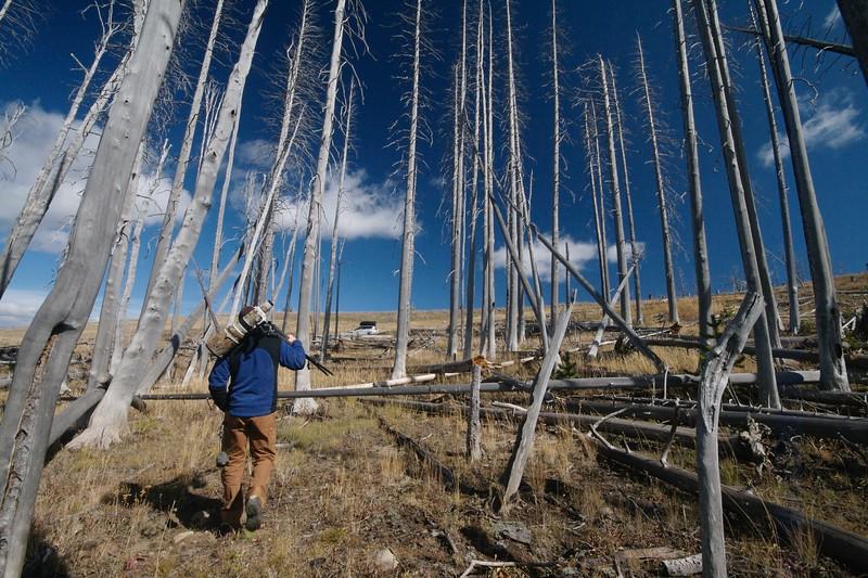 Ryan Marshik Yellowstone _MG_4136.jpg