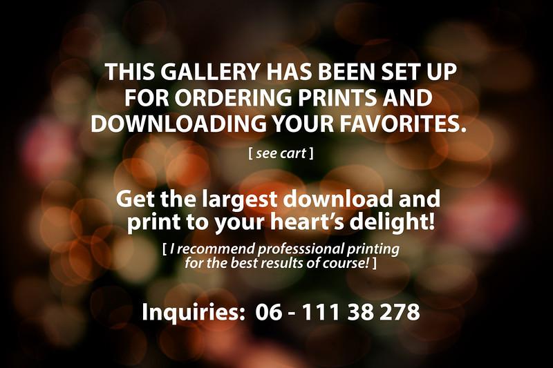 ordering prints.jpg