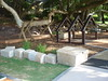 open plan timber house cubby with sandstone block seating / boarders