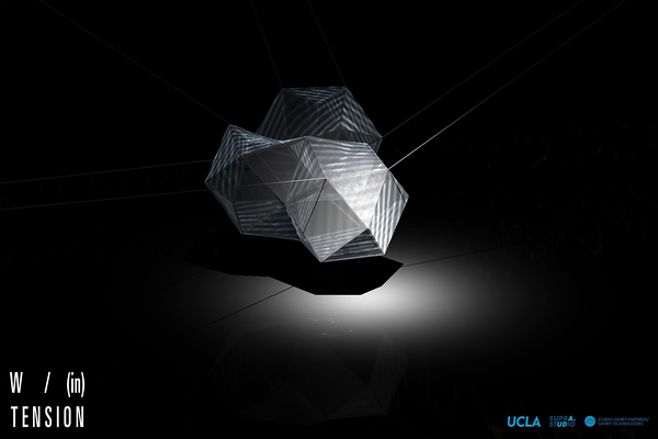 UCLA |               Masters of Architecture II  (M.Arch II)