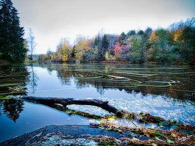 Water Trails: Swedish Rivers in Autumn & Winter