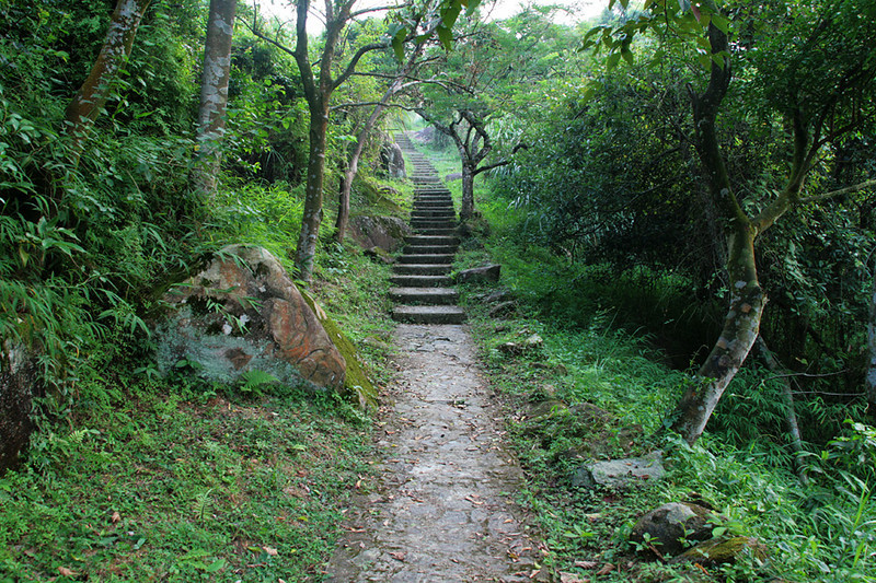 Shing Mun Country Park, Wilson Trail Stage 7