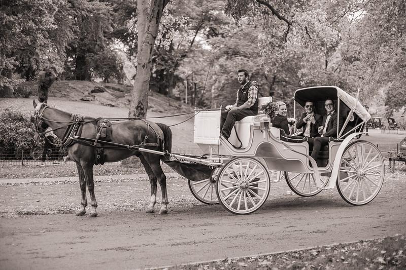 Central Park Wedding - Ricky & Shaun-4.jpg
